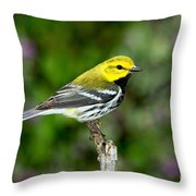Black Throated Green Warbler Throw Pillow