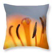 Bloom Of Lily Throw Pillow