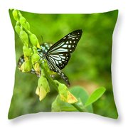 Blue Butterflies In The Green Garden Throw Pillow