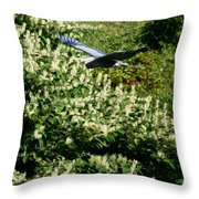 Blue Heron Flight  Throw Pillow