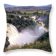 Blue Nile Falls Throw Pillow