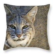 Bobcat Throw Pillow by William H. Mullins