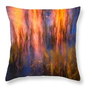 Bridge Of Lions Reflections St Augustine Florida Painted    Throw Pillow