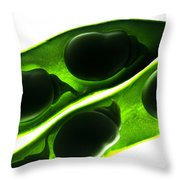 Broad Beans In The Pod Throw Pillow