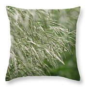 Brome Grass In The Hay Field Throw Pillow