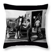 Budweiser Clydesdales La Fiesta De Los Vaqueros Rodeo Parade Tucson Arizona 1984 Throw Pillow