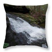Buffam Falls Lower Cascade Throw Pillow