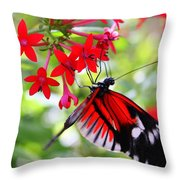 Butterfly On Red Bush Throw Pillow