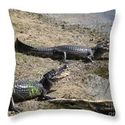 Caiman Throw Pillow