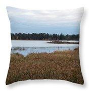 Calm Water Throw Pillow