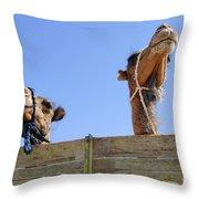 Camels At The Ashgabat Sunday Market In Turkmenistan Throw Pillow