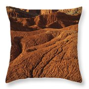 Capital Reef National Park Throw Pillow