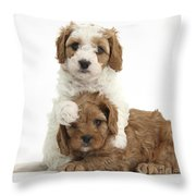 Cavapoo Puppies Hugging Throw Pillow