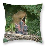 Cedar Waxwings Throw Pillow by Linda Freshwaters Arndt