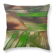 Cereal Fields From The Air Throw Pillow