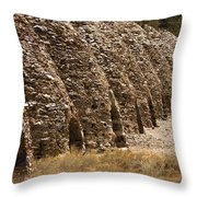 Death Valley Charcoal Kilns Throw Pillow