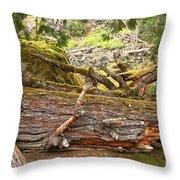 Cheakamus Rainforest Debris Throw Pillow