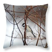 Chickadee On Woodvine Throw Pillow