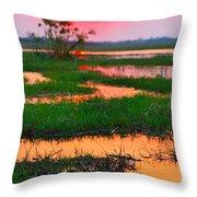 Chobe River Sunset Throw Pillow