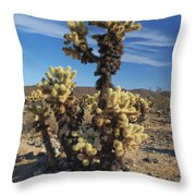 Cholla Cactus Throw Pillow