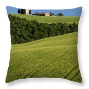 Church In The Field Throw Pillow