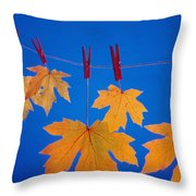 Close-up Of Fall Colored Maple Leaves Throw Pillow