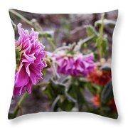 Close-up Of Flowers Covered By Frost Throw Pillow