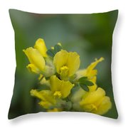 Clustered Broom Throw Pillow