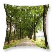 Cobblestone Country Road Throw Pillow