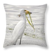 Colossal Catch Throw Pillow