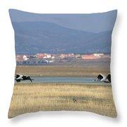 Common Cranes At Gallocanta Lagoon Throw Pillow