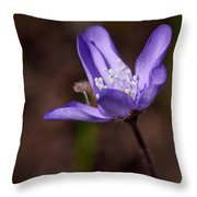Common Hepatica Throw Pillow