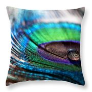 Concentric Circles Throw Pillow by Lisa Knechtel