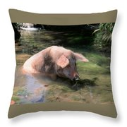 Keeping Cool Throw Pillow