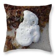 Coral Sands Throw Pillow