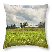 Corn Growing In Maine Farm Field Throw Pillow