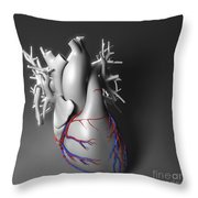 Coronary Vessels Throw Pillow