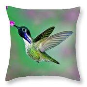 Costas Hummingbird Throw Pillow