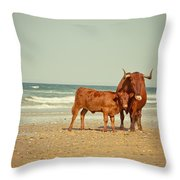 Cows On Sea Coast Throw Pillow by Raimond Klavins