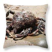 Crab Beach Throw Pillow