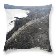 Crackle In Ice Throw Pillow