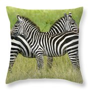 Crisscross Stripes Throw Pillow