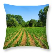 Cultivated Land Throw Pillow