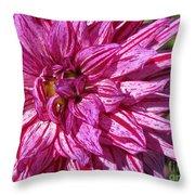Dahlia Named Annette C Throw Pillow