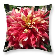 Dahlia Named Bodacious Throw Pillow