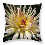 Dahlia Named Camano Ariel Throw Pillow