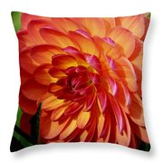 Dahlia Profile Throw Pillow