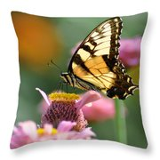 Delicate Wings Throw Pillow by Bill Cannon
