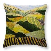 Delta Fields Throw Pillow