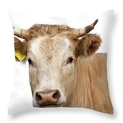 Detail Of Cow Head Throw Pillow